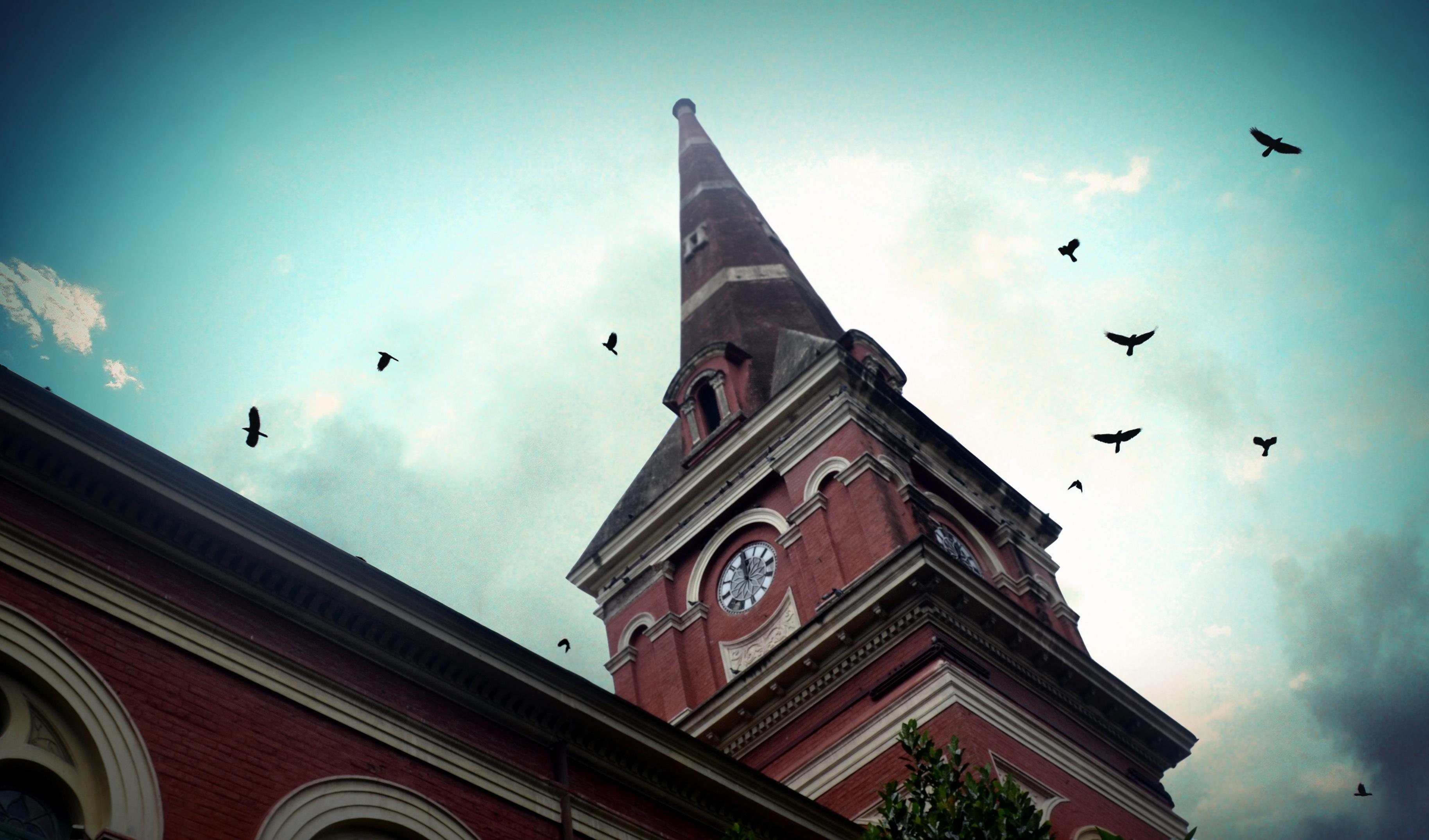 david morgan synagogue kolkata