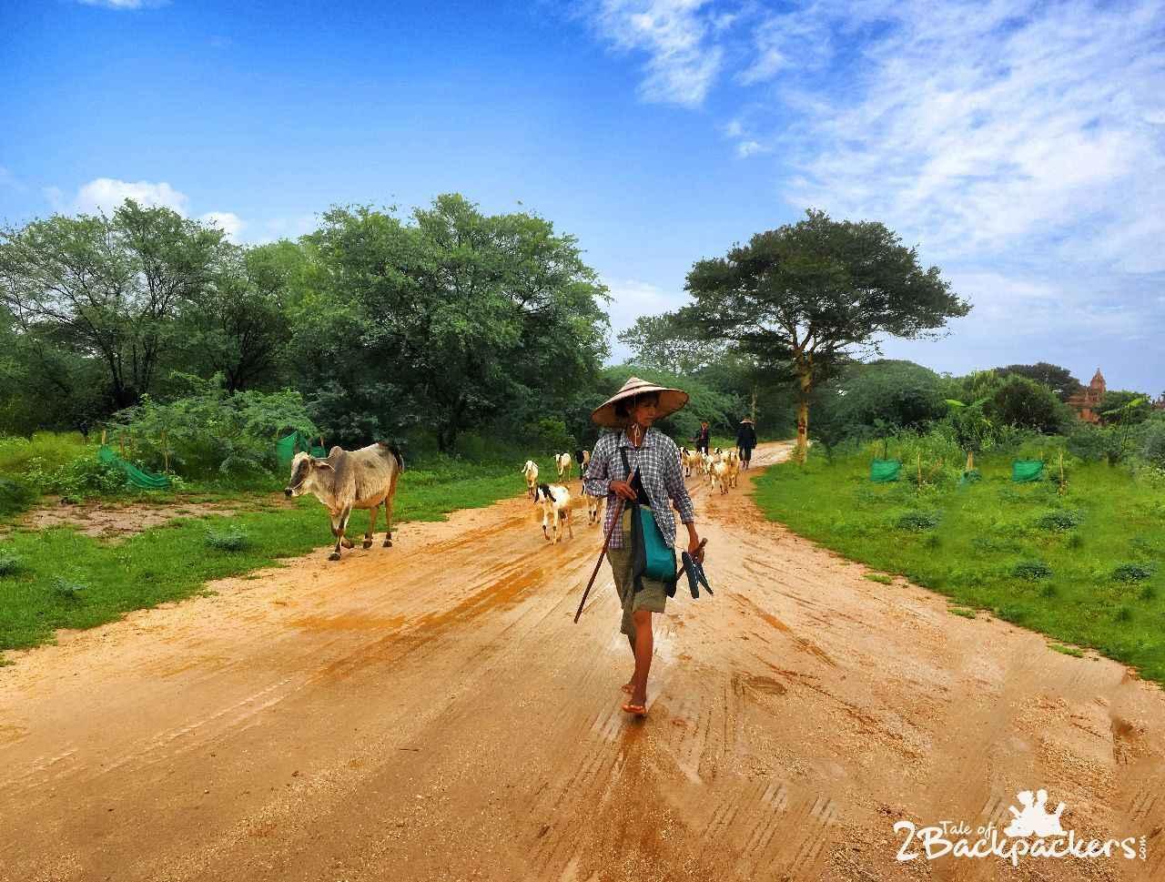 Life in Bagan Myanmar
